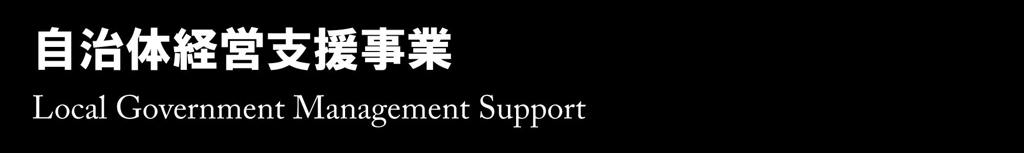 自治体経営支援事業 - Loacl Government Management Support